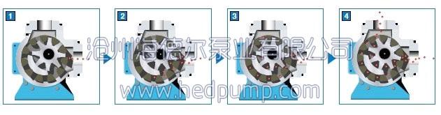 (1)工作原理具有内齿的驱动齿轮(外转子)带动内转子在全封闭的泵体内